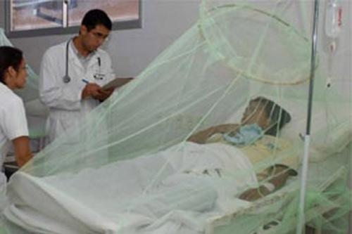 Dengue paciente