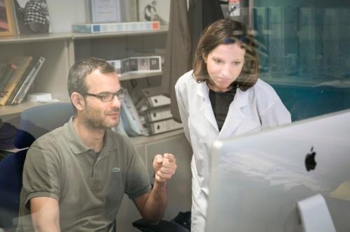El equipo de científicos del Instituto de Investigación Biomédica de Barcelona (IRB), España descubrió que al eliminar las células CD 36, el tumor pierde la capacidad de generar metástasis